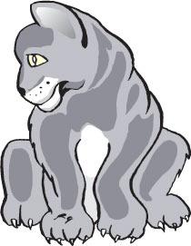 Panther-Cub